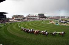 2008 Grand National Photo Gallery