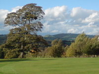Ashbourne Golf Club - Home