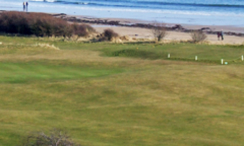 Alnmouth Village Golf Club - Northumberland