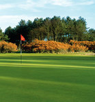 Archerfield Links: Fidra Links