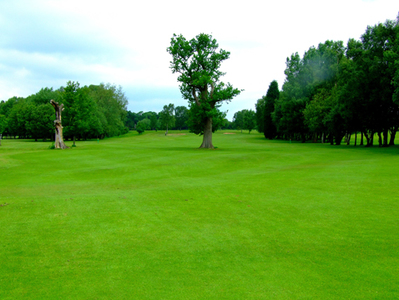 Barlaston Golf Club : Staffordshire - Hole 17 - Twin Oaks