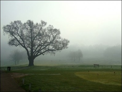 Braeside Golf Club - Gallery