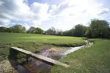 Home Page : Bramshaw Golf Club