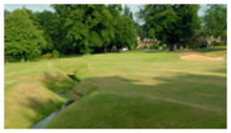 Calcot Park Golf Club - The Official Website