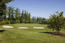 Carrick-on-Suir Golf Club - a premier Irish course in the South <b>...</b>
