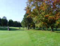 Chelmsford Golf Club - Membership