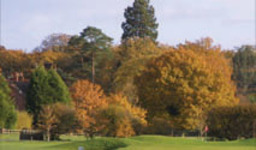 Green Fees -