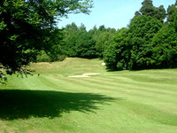 Dorking Golf Club