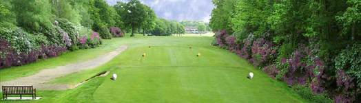 Golf Guildford - Drift Golf Course Surrey Green Fees