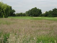 The Club : Ealing Golf Club