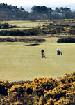 Golf South Ayrshire : Troon Fullarton