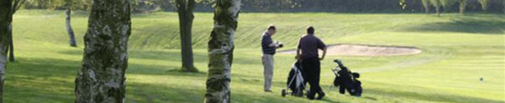 Henley Golf Club // News & Events // News // Draw and starting <b>...</b>