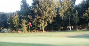 Hickleton Golf Club | Members | Rabbits Section