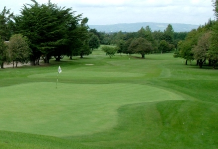 Limerick Golf Club