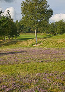 Llandrindod Wells Golf Club - Country Membership - become a member <b>...</b>