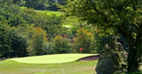 BUGGY HIRE :: Matlock Golf Club