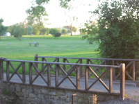Moate Golf Club - Home Page