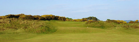 Contacts :: Panmure Golf Club