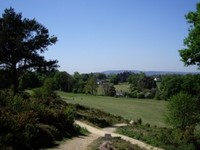 Golf & Society Days : CLUB View - Reigate Heath Golf Club