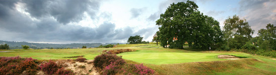Welcome to the website of Reigate Heath Golf Club in Surrey : CLUB <b>...</b>