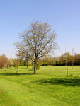 Romford Golf Club - Course Pictures