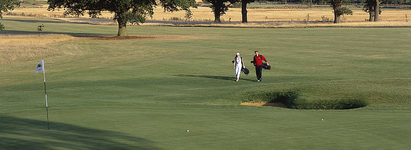 Golf Courses England, 18 Hole Golf Course Leicestershire, Midlands