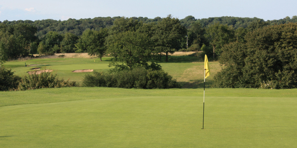 Tall Pines Golf Club .North Somerset. Official Web Site 2007 on