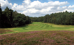 Red Course Holes : The Berkshire Golf Club