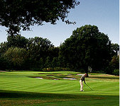 The Wisley Golf Club - Membership Features