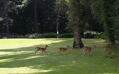 Theydon Bois Golf Club: Golf club and golf course in Essex,. www.