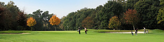 West Surrey Golf Club | Visitor Info