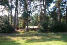 Heritage : Worplesdon Golf Club