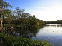 Parks and Open Spaces – General Information - Enfield Council