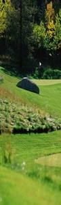 Welcome to Wooler Golf Club - events - Content Management website <b>...</b>